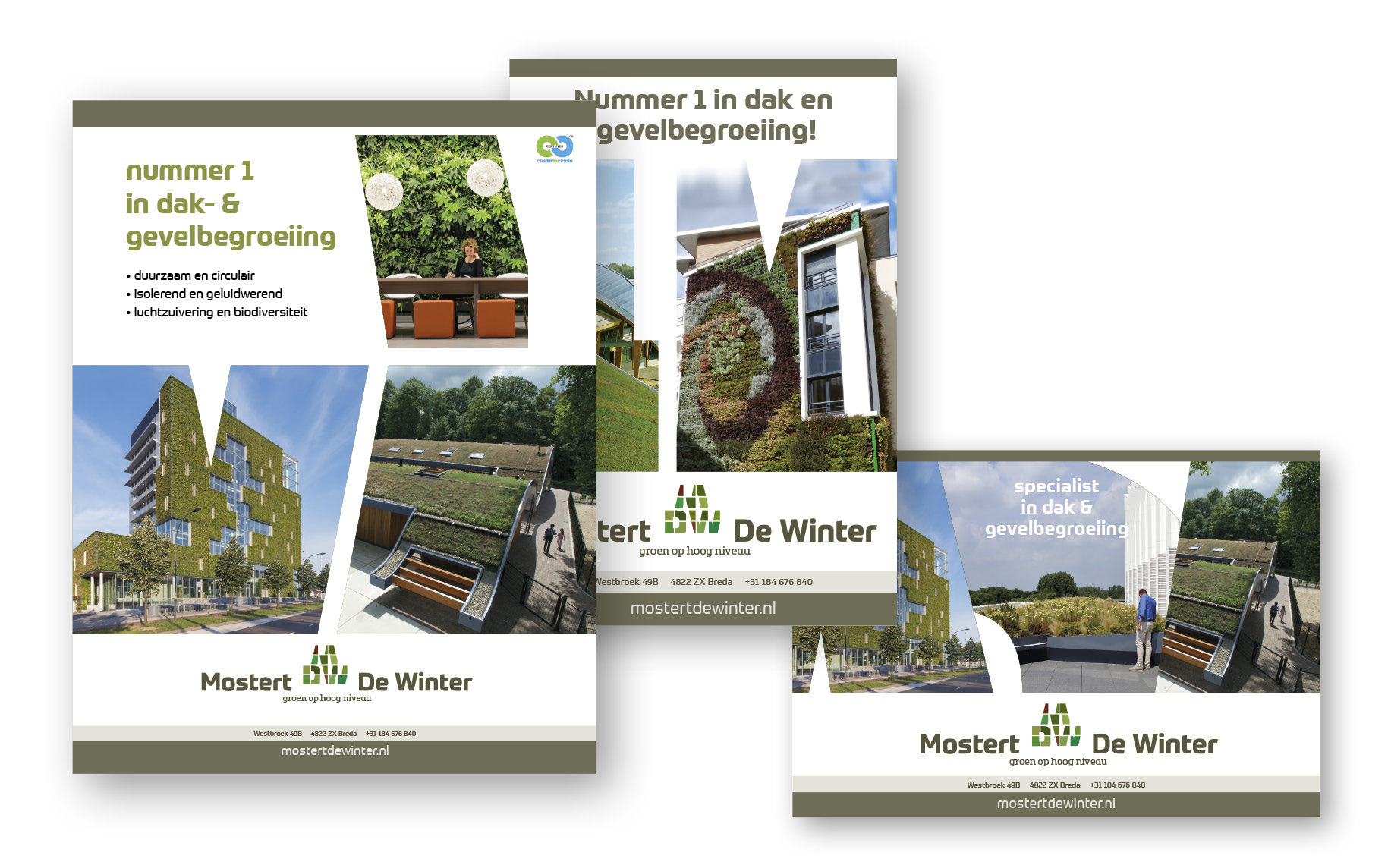 advertenties-mostert-de-winter-verschillende-formaten